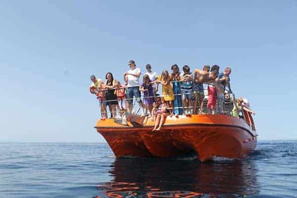 Orange Boat with people looking for dolphins