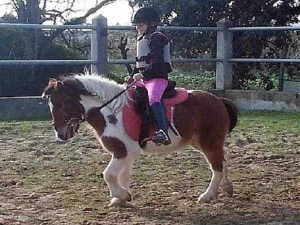 Child on a horse riding lesson