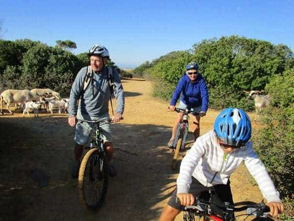 2 adults and 1 child riding on a dirt track, with sheep near, Albufeira.